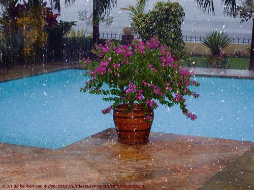 Bali 2010 - Regen