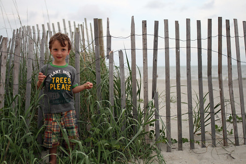 Beach Boy 5