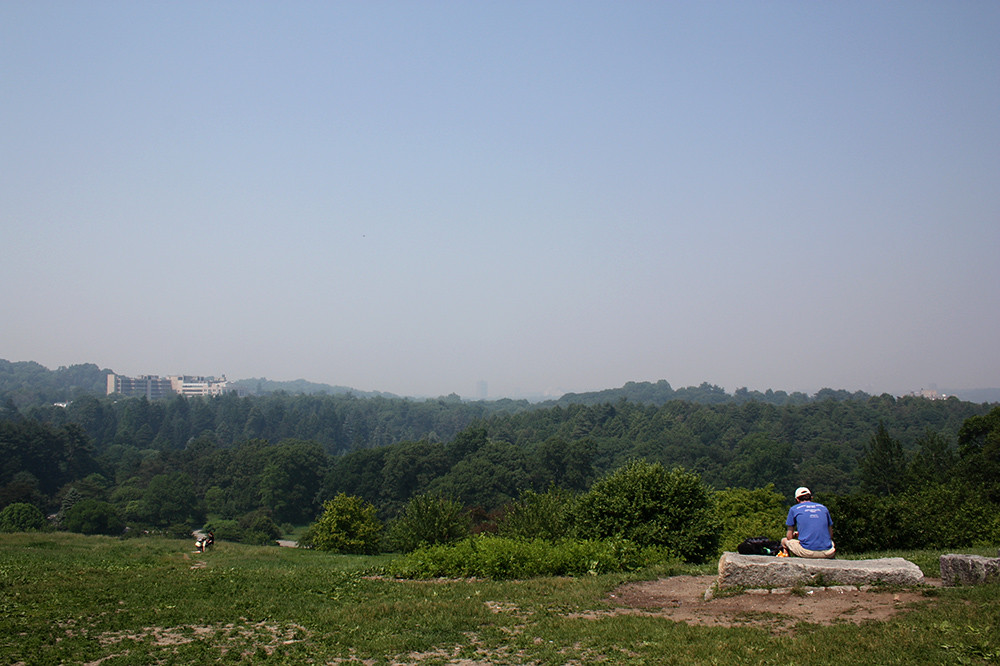smokey view from peters hill at arnold arboretum