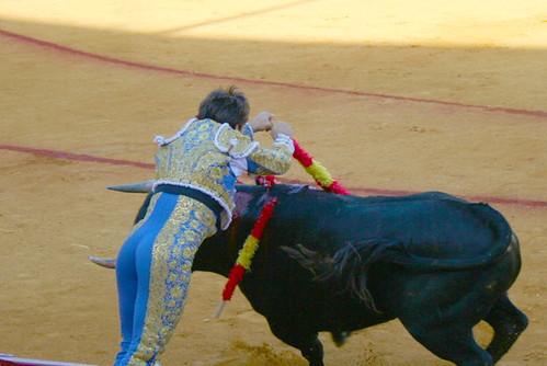Dianas- Spain 2010 369