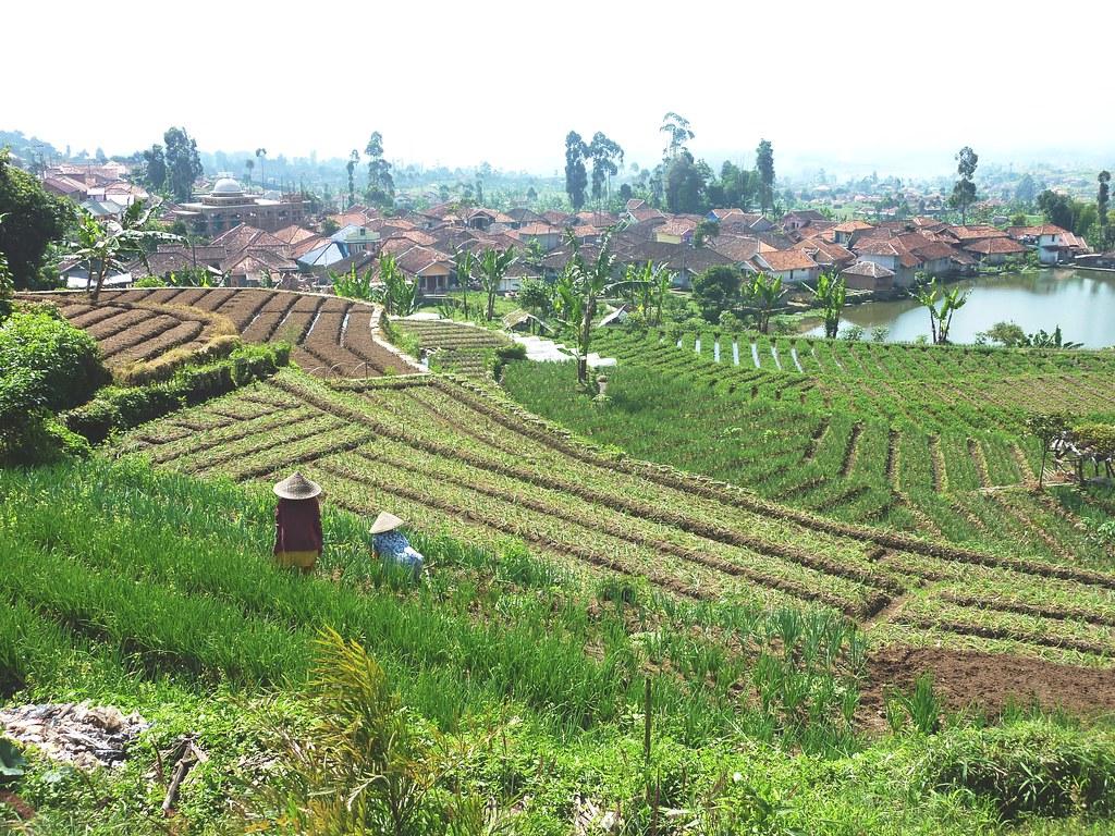 Java-Bandung-Region (52)