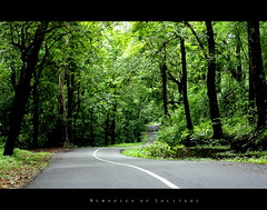 And Miles to go... Before I sleep (EXPLORE - 16th June 2010) (arunsankarphotography) Tags: road india forest canon landscape kerala dp greenery 1855 longroad tpc godsowncountry vazhachal athirappilly 550d metalroad keralaclicks memoriesofsolitude