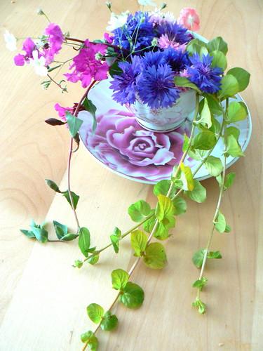 flowers in teacup