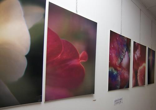 The Photogrtaphic Work of Anna Maria Angelini at the Zamenhof