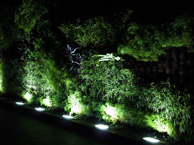 IMG_1055 De Garden ,Ipoh , Night
