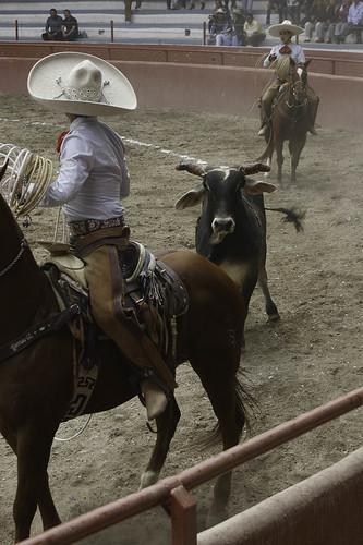 vaqueros-5