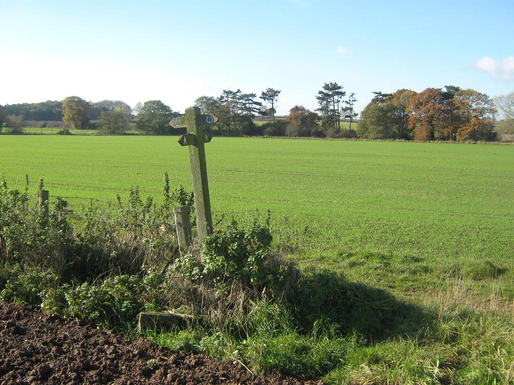 Bonnie Prince Charlie Walk near Hollington, Derbyshire