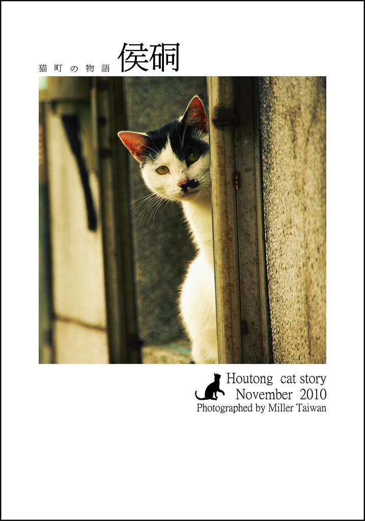貓の町 物語   侯硐