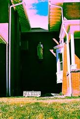saint (Ink Spots) Tags: street yards film animals religious decorative statues denver statuary iconography yardart