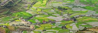 File382+89+94.0617.Cao Phạ.Mù Cang Chải.Yên Bái.