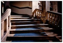 Aufgang (frodul) Tags: rathaus treppe aufgang stufe step staircase stairs hannover geländer cityhall hanover architektur banister detail gebäude gestaltung innenansicht kurve linie stair stairrail stairway treppenhaus niedersachsen deutschland