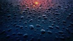 D R O P S (Veitinger) Tags: veitinger sony wasser water tropfen wassertropfen regentropfen drop drops raintrops waterdrops liight licht regen rain