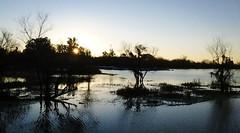 Arroyo Molino (Giovanni Rottoli) Tags: river rio sunset puesta de sol contraluz