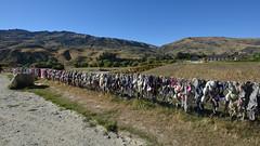 Bra Fence, Cardrona, Cardrona Valley (Lim SK) Tags: bra fence cardrona new zealand valley otago
