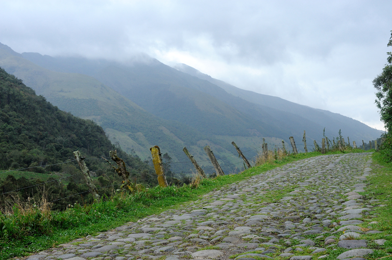 Exiting Cajas National Park