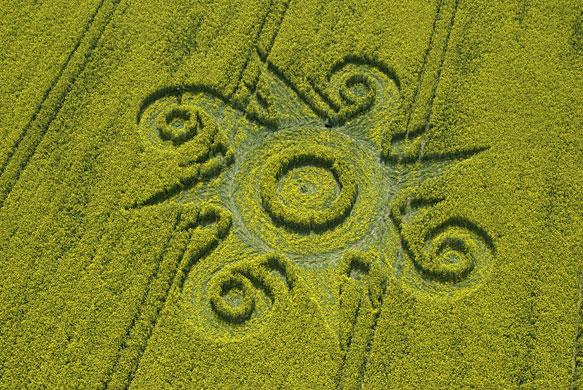 Crop-circles-A-crop-circl-008