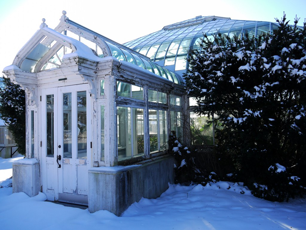Greenhouse, backlit