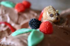 yule log (emmisary) Tags: marzipan gummies christmascake fondant
