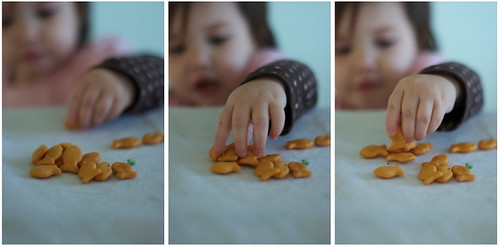 Snack Sequence