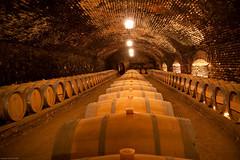 132/365 - Concha y Toro Wine Cellar