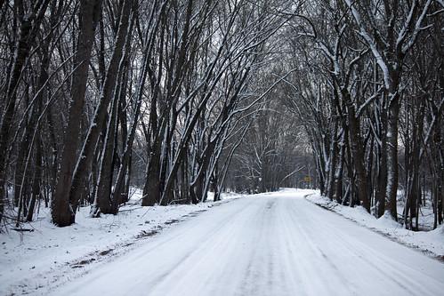 Bark River Road