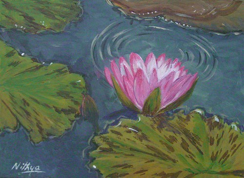 Waterlily #5