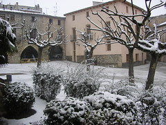 gener 2010
