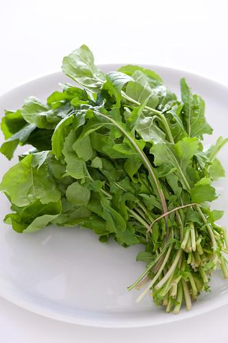 salad & noodles-6