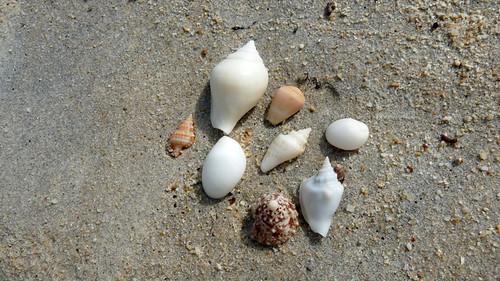 Koh Samui Ban tai Beach コサムイ バンタイビーチ3