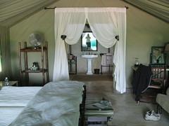 Luxury tent (SuzieQ26uk) Tags: africa camp southafrica safari timbavati tandatula