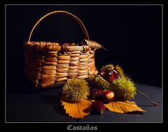 artesanía de otoño (Geli-L) Tags: naturaleza hoja madera asturias otoño erizo bodegon castaña cesto fz28 doubleniceshot