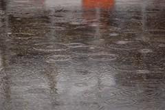 Rain (Sundust_L) Tags: water rain drops agua eau wasser acqua inverno pioggia regen tropfen piove gocce pozzanghera the4elements