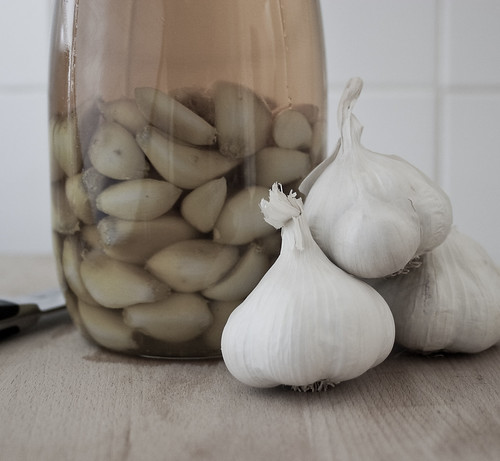 garlic confit in jar