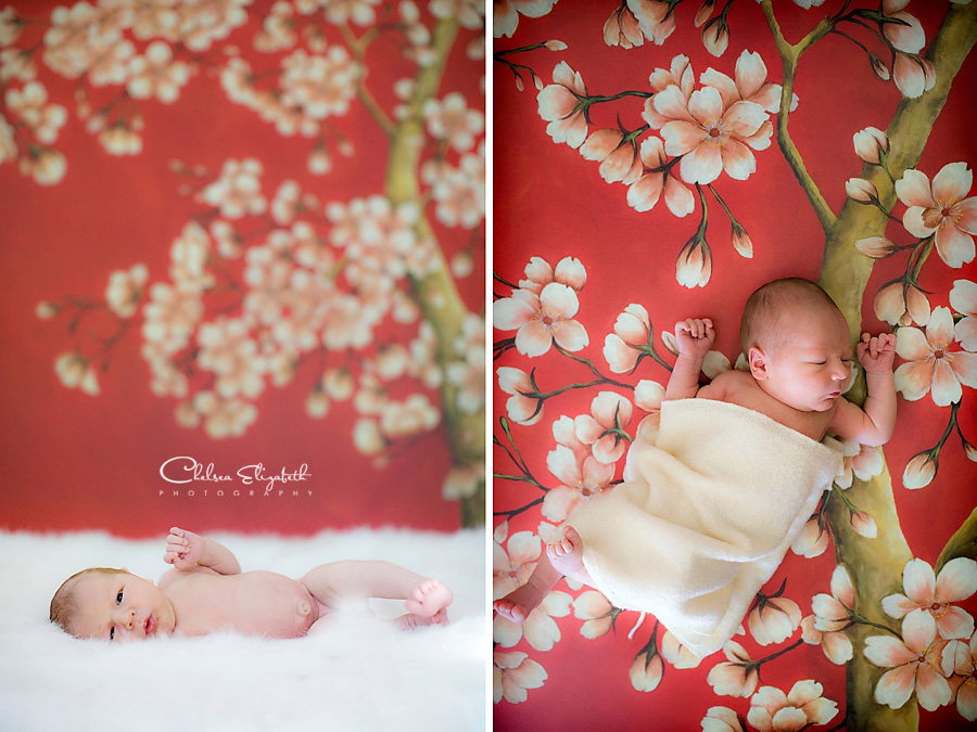 newborn baby and red cherry tree blossoms