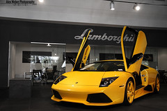 All Yellow LP640 (Alex Weber) Tags: cars alex car yellow speed canon photography photo moving dof shot miami wheels fast super spot best lp 7d 28 expensive rims panning ever lamborghini find supercar fastest weber murcielago lambo 640 murci lp640