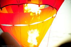 Balloon Festival-0203 ([manOFstills]) Tags: clark fontana rinoa balloonfest project365 5dmarkii 5dmk2 project365d manofstills nikkoreyes