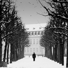 Walk. (Martin Gommel) Tags: bw birds germany walking stadt frau schwarzweiss schloss karlsruhe bume innenstadt 2010 laufen