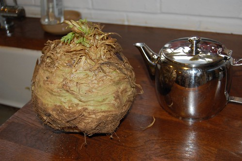celeriac from the Farmers' Market