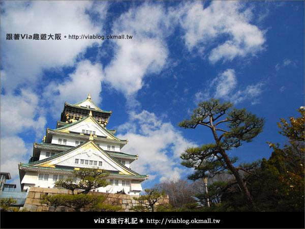 【via關西冬遊記】大阪城天守閣!冬季限定:梅園梅花盛開28