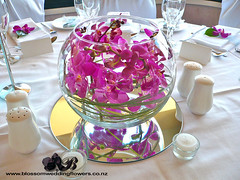 pink-orchid-fishbowl (Blossom Wedding Flowers) Tags: pink flowers wedding roses white orchid flower church floral girl rose mirror bride petals lily basket orchids petal fishbowl tiles tables bouquet flowergirl teardrop bridal corsage grooms buttonhole vases arrangements cascading centrepieces groomsmans
