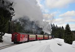 8904 (maurizio messa) Tags: railroad schnee snow germany railway trains steam neve bahn mau harz 8904 germania ferrovia treni hsb dampf sachsenanhalt vapore schmalspurbahn harzquerbahn nikond90 br99