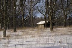 Storage (Borgabisi (Kris Harrison)) Tags: winter snow sweden nikond200 nikon18200mm kapellskär borgabisi