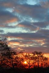 6.46 portrait sunrise (nuframe) Tags: uk blue red england sky sun colour clouds sunrise bright yorkshire southyorkshire cloudformations redskies sailorswarning thorpehesley 646sunrise