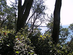 A Morning Of Sun And Shadows (fewstingscorpio) Tags: seattle park trees beach water forest boat washington walk westseattle pacificnorthwest sensational pugetsound lincolnpark bluff saltwater ferryboat evergreentrees anawesomeshot