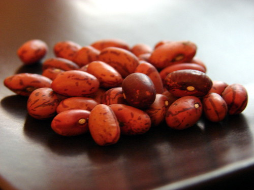 True Vermont Cranberry Beans