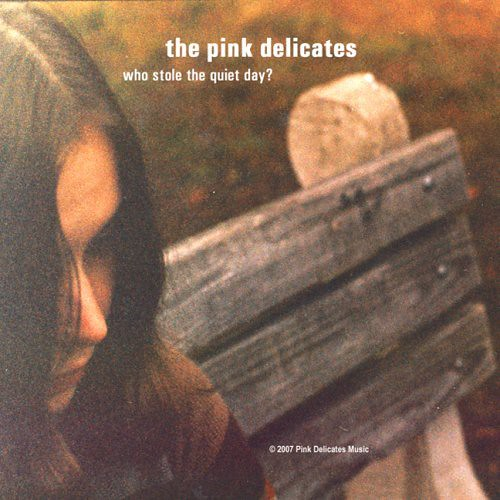 PINK DELICATES - Who Stole The Quiet Day