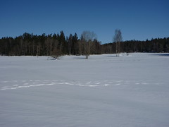 Järvafältet Photo