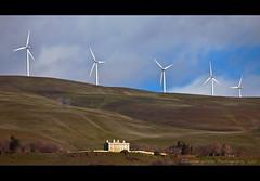 Columbia Gorge Wind Power (Darren White Photography) Tags: canon columbiariver blueskies washingtonstate rollinghills columbiarivergorge windpower windturbines maryhillmuseum experiencewa darrenwhite darrenwhitephotography 5dmkii