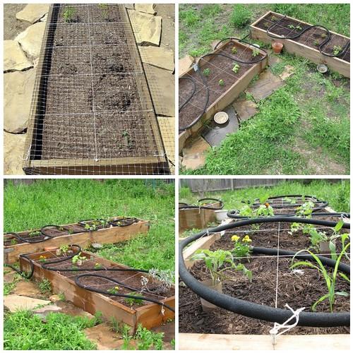 My Spring 2010 Veggie Garden Mosaic
