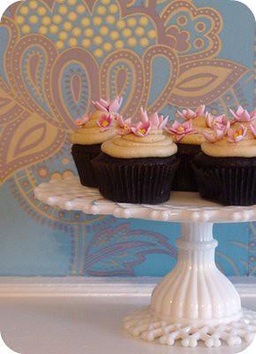 cupcake_sarah_magid